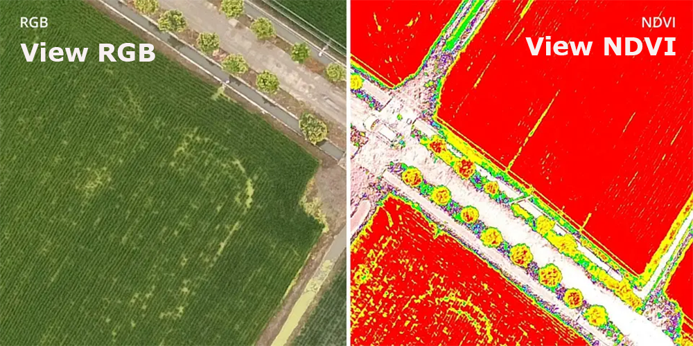 View Both RGB and NDVI Feeds